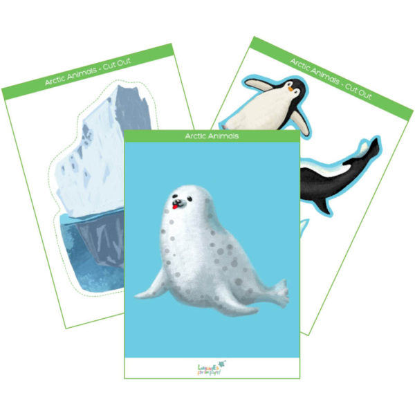 arctic animals flashcards & interactive cards product cover
