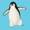 printable flashcards, penguin