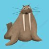 printable flashcards, walrus