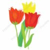 easter printable flashcards, tulips