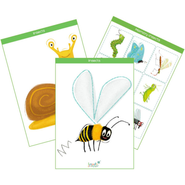 insects & small animals printable flashcards feat. img