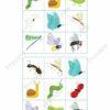 printable flashcards, insects bingo