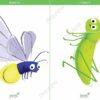 printable flashcards, firefly, grasshopper