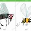 printable flashcards, fly, bee