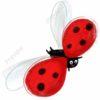 printable flashcards, ladybird