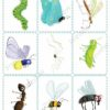 printable flashcards, insects memory game