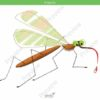 printable flashcards, mosquito